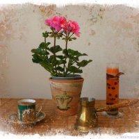 Про герань и кофе :: Nina Yudicheva