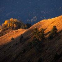 Осень в Ингушетии :: Артур
