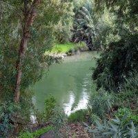 Река Иордан. Израиль :: Валерий Подорожный