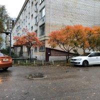 Городская осень :: Alexey YakovLev