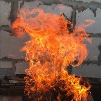 Пламя :: Катерина Некрасова