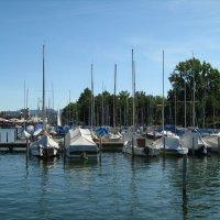На Цюрихском озере :: Гала
