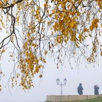 Туманная осень :: Арина