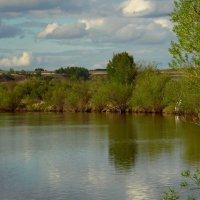 У тихой реки. :: nadyasilyuk Вознюк