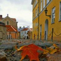 новая осень в старом городе... :: Ирэна Мазакина