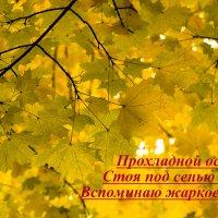 *** :: Игорь Николаев