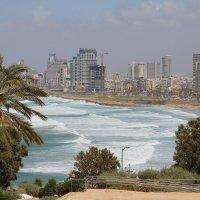 Тель-Авив :: Михаил Бояркин