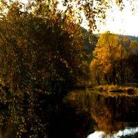 Осень золотая :: Мила Солнечная