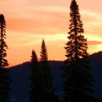 утро в горах Шории :: Евгений Фролов