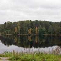 Осень. :: Николай Тренин