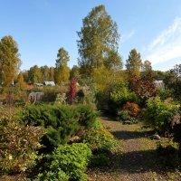 во саду ли, в огороде :: Лана Lana