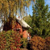 прекрасный сад :: Лана Lana