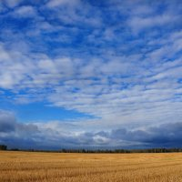 Осеннее поле :: Валерия заноска