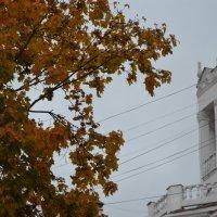 Осень в Смоленске) :: Дмитрий Абрамов