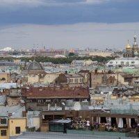 крыши :: Наталья Василькова