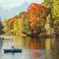 Питер. Осень. Елагин остров. :: Наталия Крыжановская