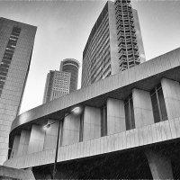 Рамат-Ган дождь :: Lev Tovbin