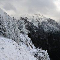 Снег в горах 2. :: Leonid Volodko