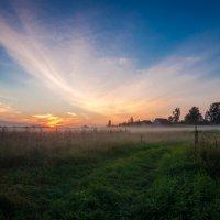 Туманный закат :: c_rust ><