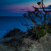 Всё тоже Чёрное море :: Сергей Рубан
