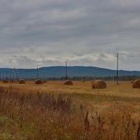 Осень на дороге. :: Наталья Юрова