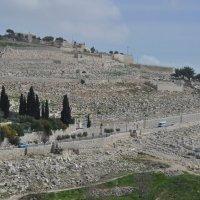 Кладбище. Иерусалим. :: Елена Киричек