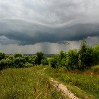 Запах приближающегося дождя :: Ксения Соварцева