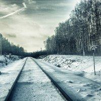 Путь в зиму :: Сергей Дубинин