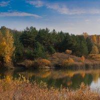 Осень :: Denis Pimonov