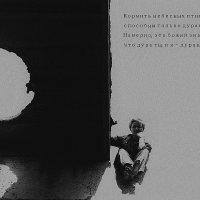 """Кормить небесных птиц с руки..."" :: Наталия Галуза"