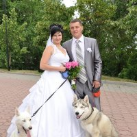 Свадьба: Денис и Юля :: Максим Жуков
