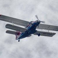 Ан-2-100 :: Павел Myth Буканов