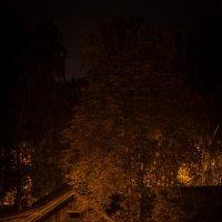 ночное... :: Андрей Пантюхов