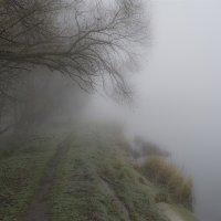 Берег тумана :: Владимир ЯЩУК