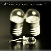 Семейная драма :: Денис Антонов