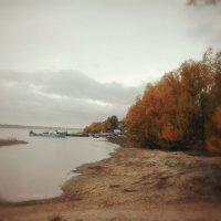 Осенний пейзаж :: Елена Бушуева