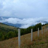 Архыз в облаках :: Светлана Попова