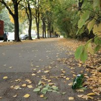 снова осень... :: Михаил Лесин