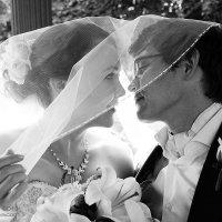 wedding :: Юлия Яковлева