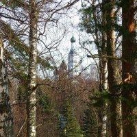 Церквушка за деревьями :: Денис Бугров