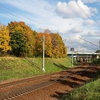 Осенние краски :: Евгений Кайдалов
