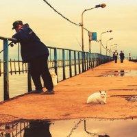 В ожидании улова :: Kate Монастырева