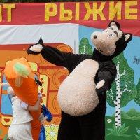 привет :: Сергей Старовойт