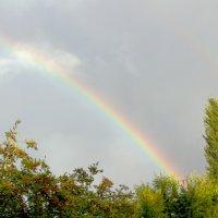 Радуга после дождя.. :: Юрий Стародубцев