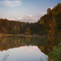 Лесное озеро :: Denis Pimonov