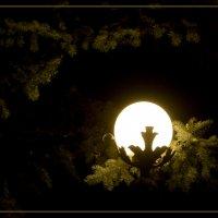 Луна на пядестале))) :: Игорь Кубай