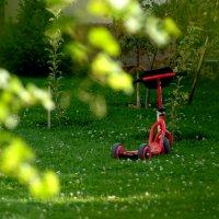 В саду... :: Kенжебек Токочев