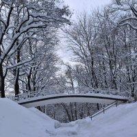 В зимнем парке 3 :: Nonna
