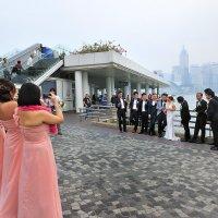 Свадьба :: Arximed
