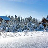 зима :: Alexsei Melnikov